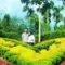 4 Tempat Wisata Romantis di Medan